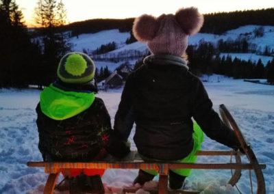 Kinder sitzen auf Schlitten und beobachten die Winterlandschaft